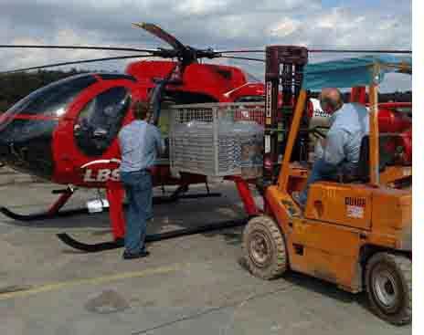 Eiltansport Hubschrauber